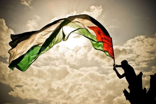 1282231687-the-secrets-behind-the-palestinian-flag-_414349